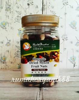 dried mix fruit nuts